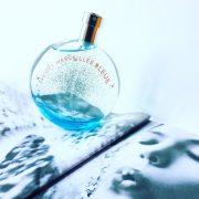 Hermes Eau des Merveilles Bleue 100ml (xanh new 2017) 2