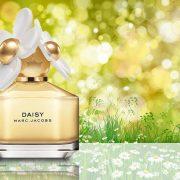 Marc Jacobs Daisy EDT 100ml - nữ 2